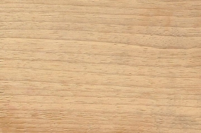 indian_silver_gray_wood